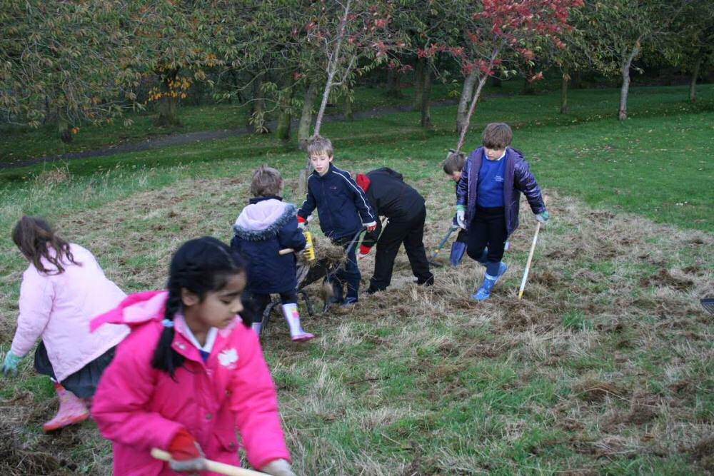 Raking the lower section of the wildflower meadow