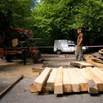 Milling of Cherry Tree logs for benches